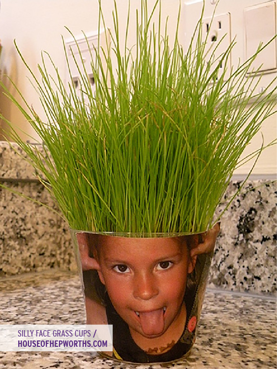 Silly Face Grass Cups