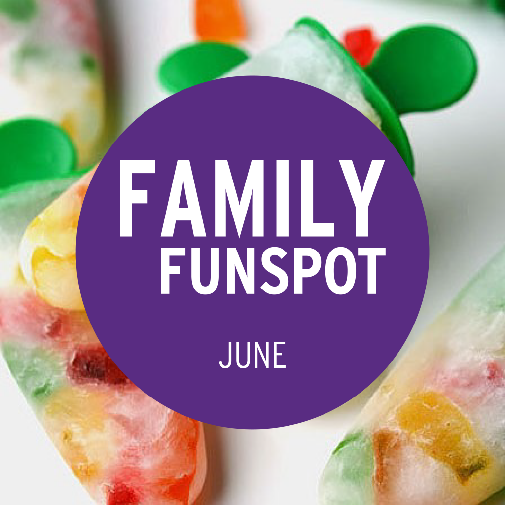 Family FunSpot June