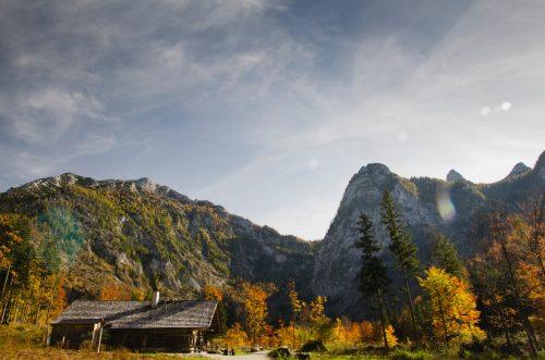 Cabin in the Fall
